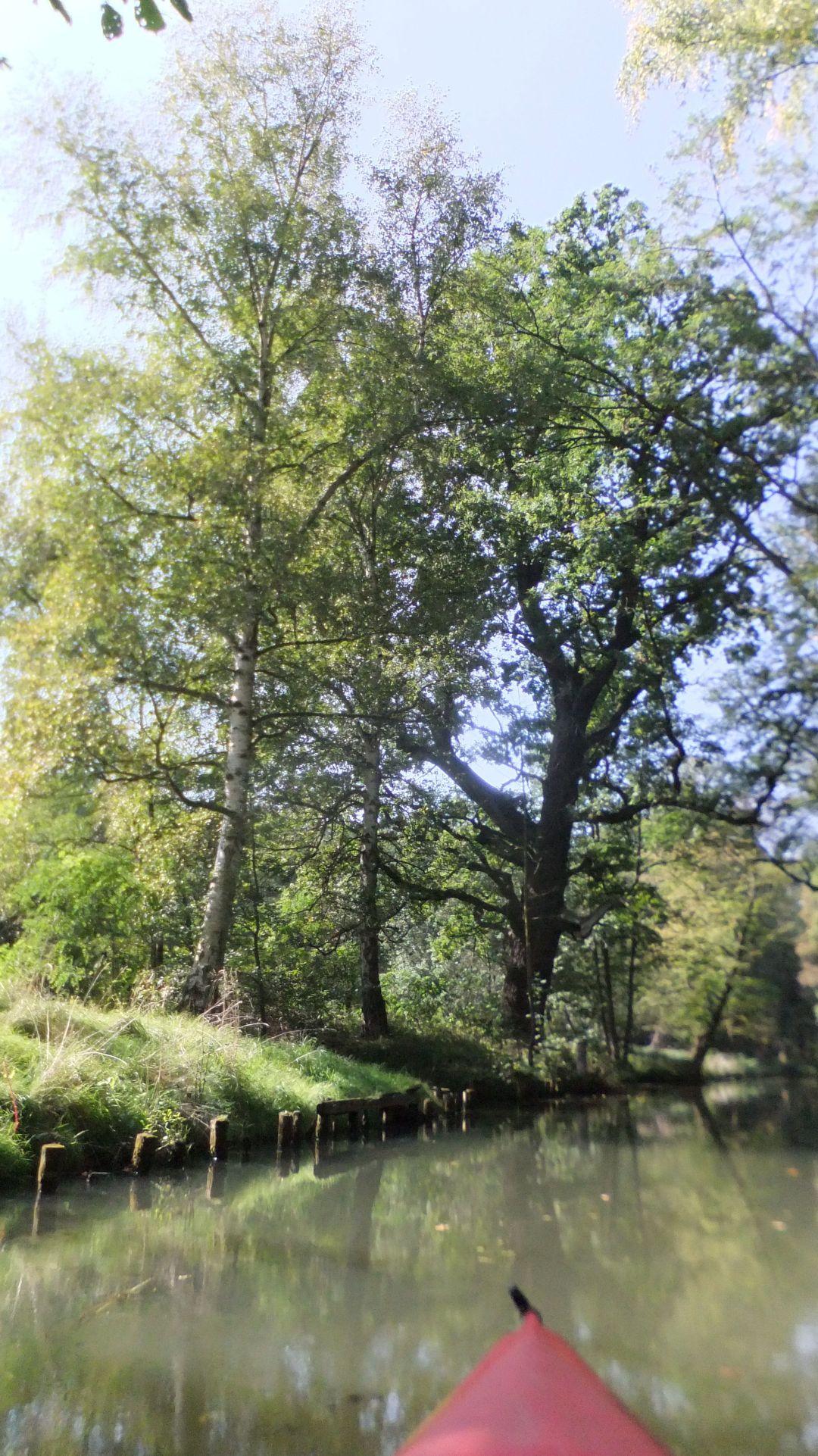 Spree Radweg 2014 - 0 (57)