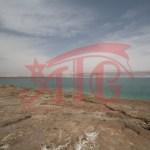 dead sea IMG_9014_SALSA
