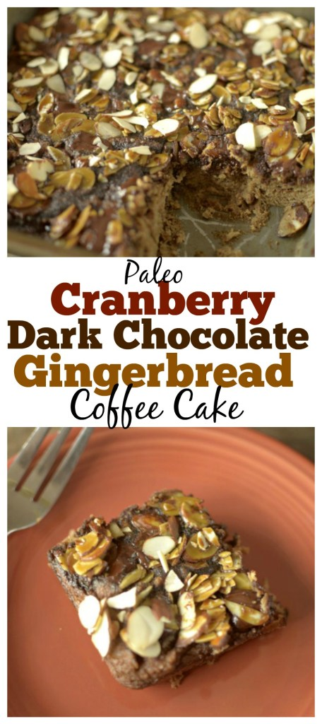 This Paleo Gingerbread Coffee Cake is studded with dark chocolate chips and tart dried cranberries to make the best healthy holiday breakfast!