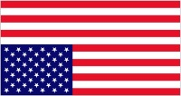 American Flag in Distress