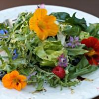 Edible Flower Salad with Basil Balsamic Vinaigrette