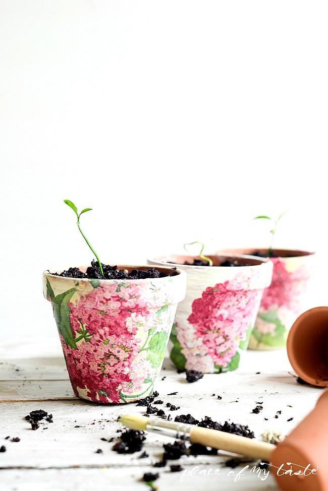 Decoupaged-Terra-Cotta-Pots-19 Place of My Taste
