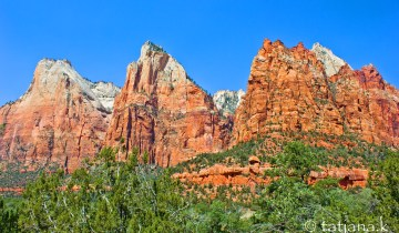 Zion-National-Park-5