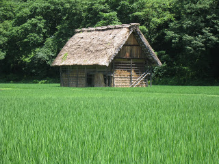 Japanese Thatched Roof House