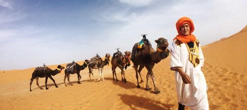 【摩洛哥】撒哈拉沙漠私人團-Day2-沙漠游泳池-奢華帳篷-駱駝