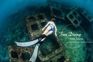 自由潛水free diving 拍美照必備技能 愛玩水的你值得考的一張證照 最溫和的極限運動