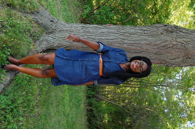 BR Chambray Shirt Dress