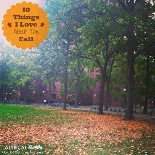 10 Reasons To Love Fall in NYC
