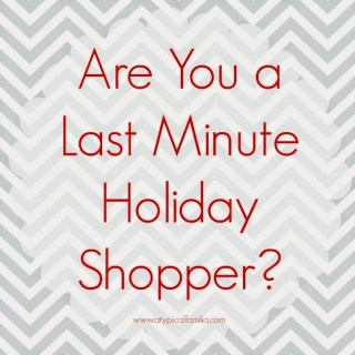 Are You a Last Minute Shopper? {Last Minute Gift Suggestions for Everyone}