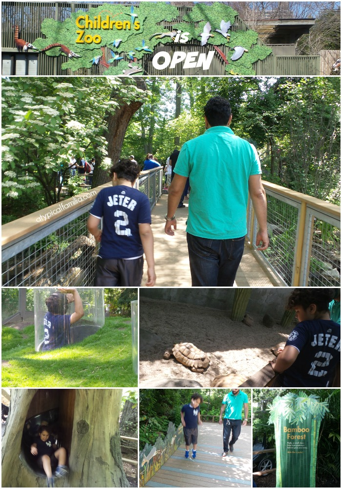 The Children's Zoo at The Bronx Zoo is Open!