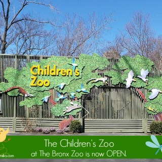 Family Fun at The Children's Zoo: June 2015 Activities at The Bronx Zoo