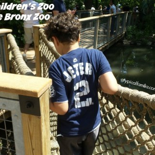 What's New at The Children's Zoo in The Bronx Zoo