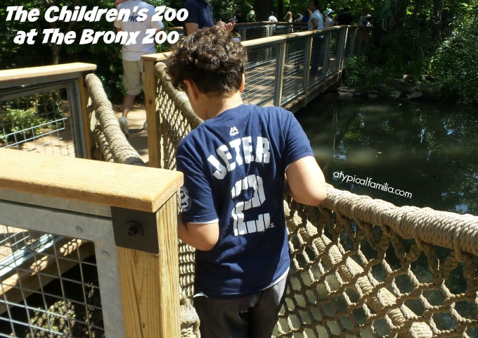 Childrens-Zoo-Atypical-Familia-Lisa-Quinones-Fontanez