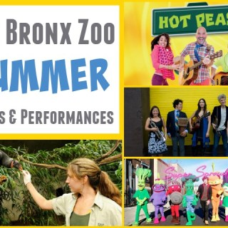 Bronx Zoo Summer Performances