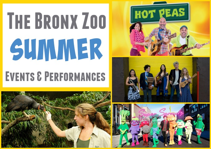 Bronx Zoo Summer Events