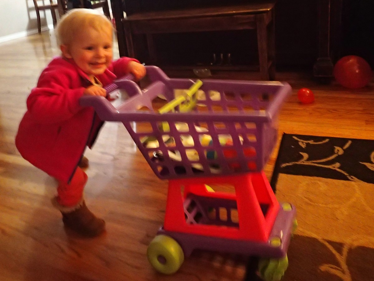 This is poor lighting, but Ellen loves her shopping cart and has turned into a bit of bag lady.