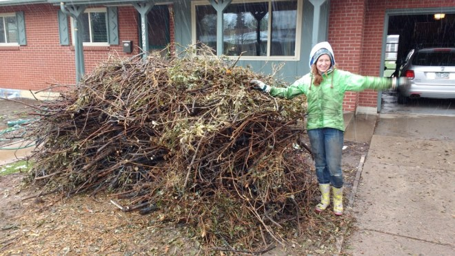 Branch Pile