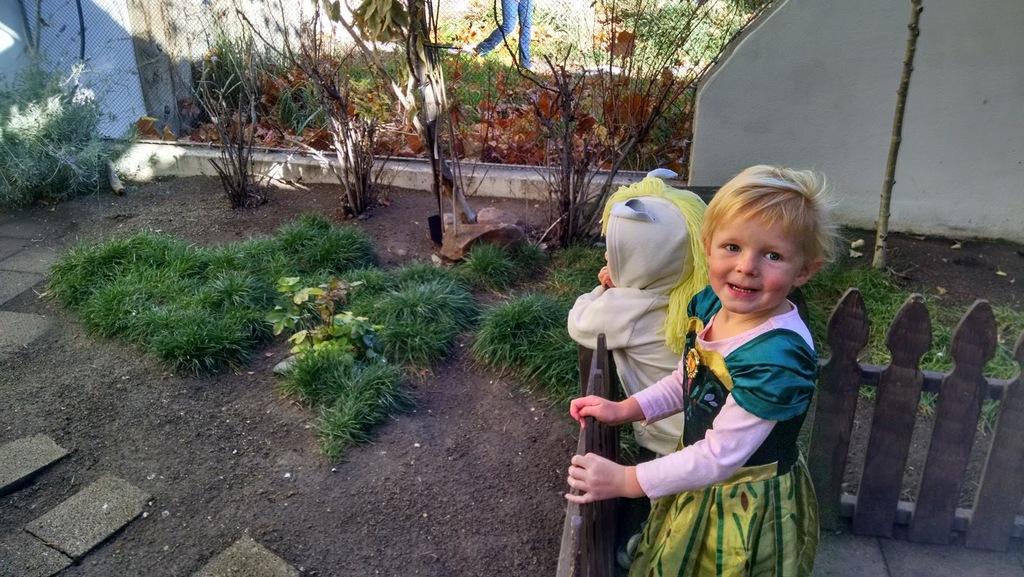 We went to the Tracy Aviary's Halloween Hoot.