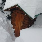 This is the outhouse that goes with the cabin. They had to dig steps down to it.