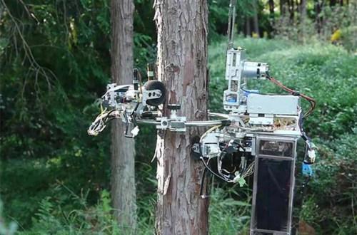 Pruning Robot