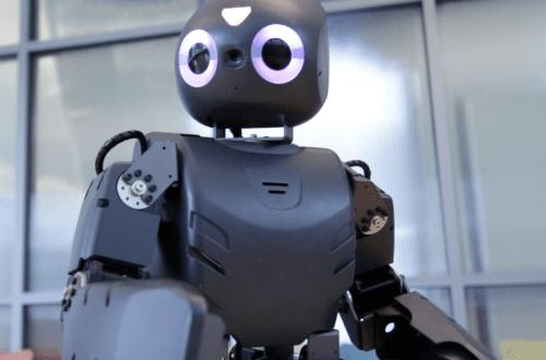 Angry Bird Robot