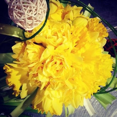 bouquet_truffaut_une_jonquille_pour_curie