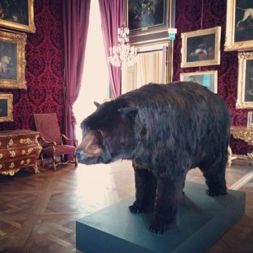 Poincheval_dans_la_peau_de_l'ours