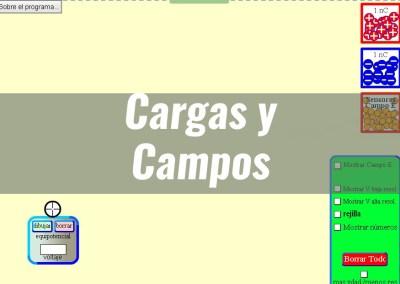 Cargas y Campos