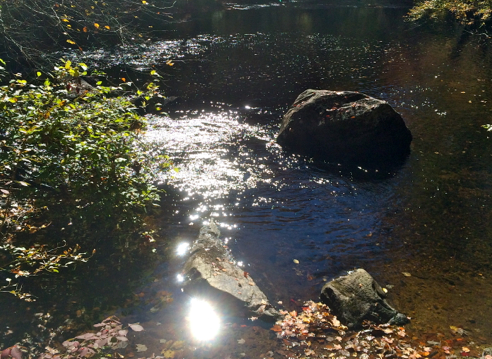 eight mile river