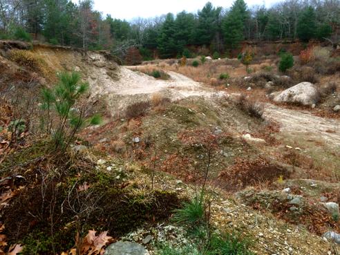old gravel pit