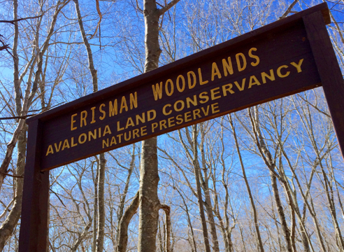 erisman woods trailhead