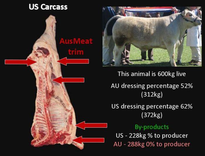 AUvsUS_beef_carcass_sm