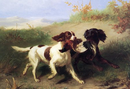 Two-Spaniels