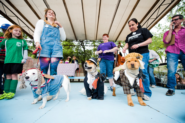pitbull terrier chow dog costume contest dressed up bonnie clyde willie nelson musician guitar