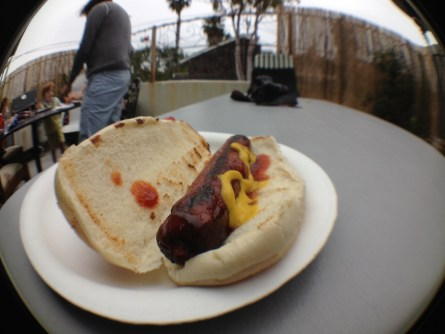 SEO Hot Dog