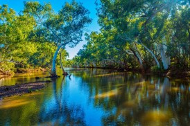 """Mangaroon Creek in Gascoyne WA"" by Jason Slade"