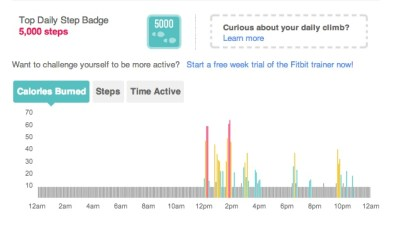Fitbit Activity Example
