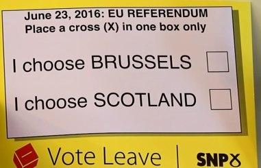 Campaign poster for Scottish Vote leave