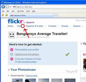 Set Flickr Privacy Settings
