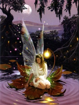 Fairy Princess Birthday Card