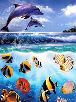 Beautiful Dolphin Scene Birthday Card