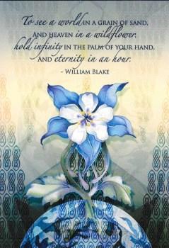 Heaven In A Wildflower Birthday Card