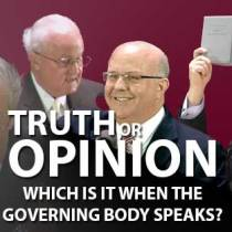 Truth or Opinion Governing Body image