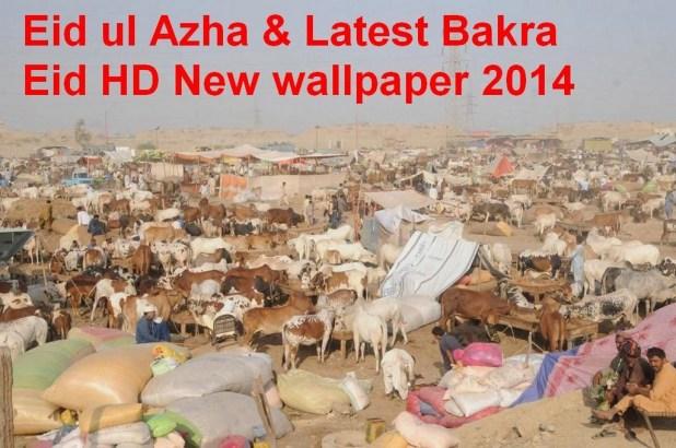Eid-ul-Adha Latest HD wallpapers 2014
