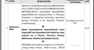 NTS Elementary School Educator (Science - Math) jobs
