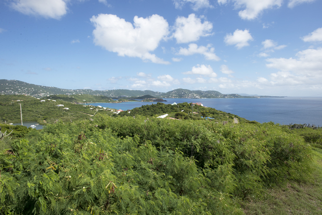 View from Water Island, USVI