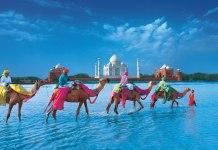 индийская виза онлайн