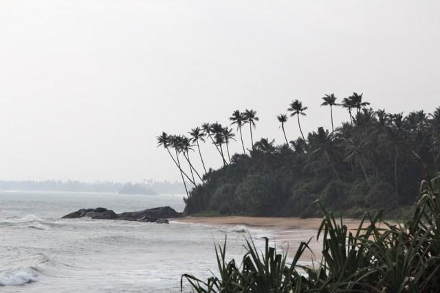 Туры на Шри Ланку