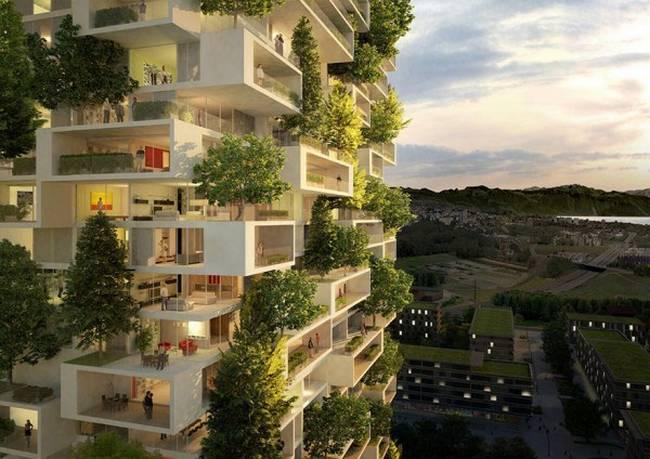 edifício-coberto-por-árvores-2