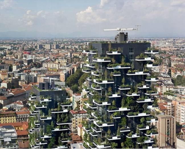 edifício-coberto-por-árvores-5